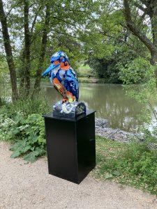 Image 3 Jubilee Lake Kingfisher