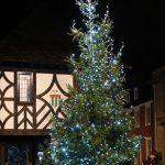 High Street Christmas Tree photo