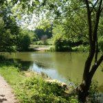 Jubilee Lake Photo