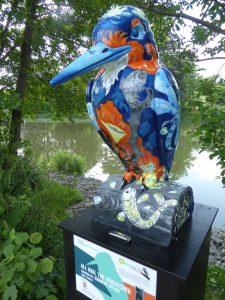 photo of kingfisher at Jubilee Lake